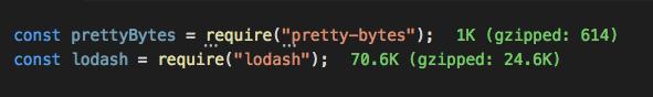 Visual Studio Code Import Cost plugin